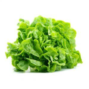 Salata Romaneasca livrare